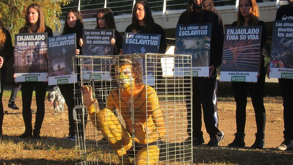 activista-enjaula-denunciar-animales-espectaculos_TINIMA20131215_0461_3